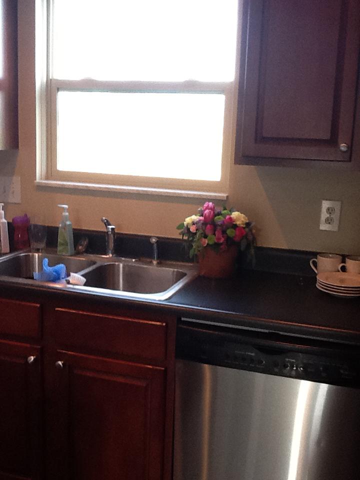 Before Kitchen Sink1