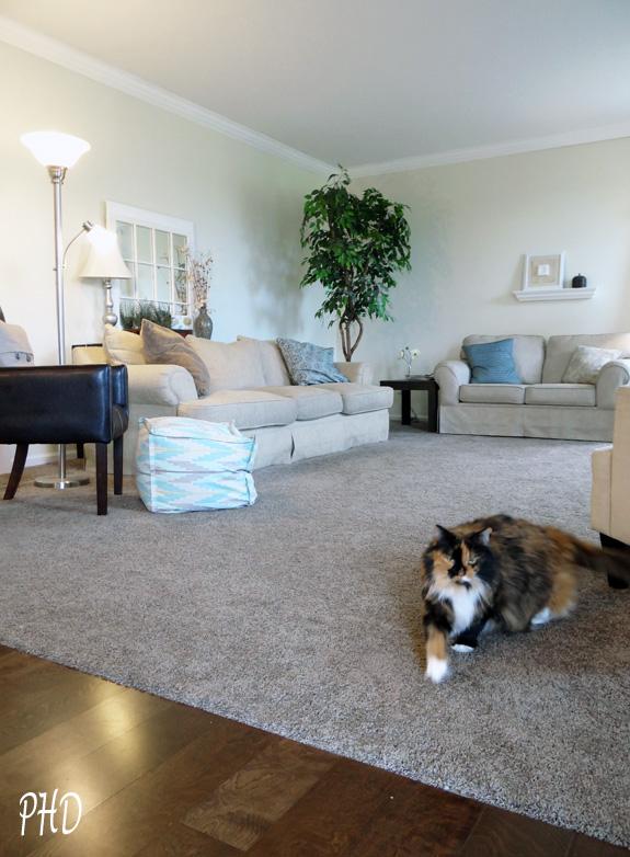 New floors in Family Room