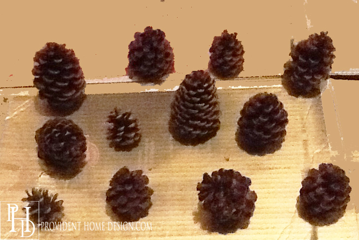 Spray Paint Pine Cones