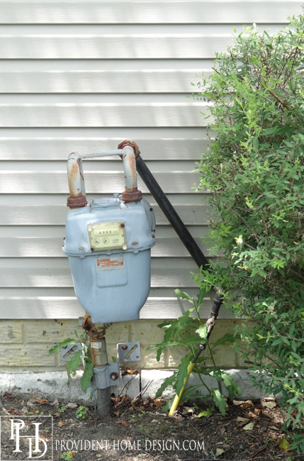 Ideas for Hiding Outdoor Utilities