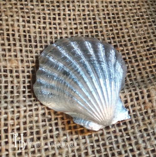Silver Seashell