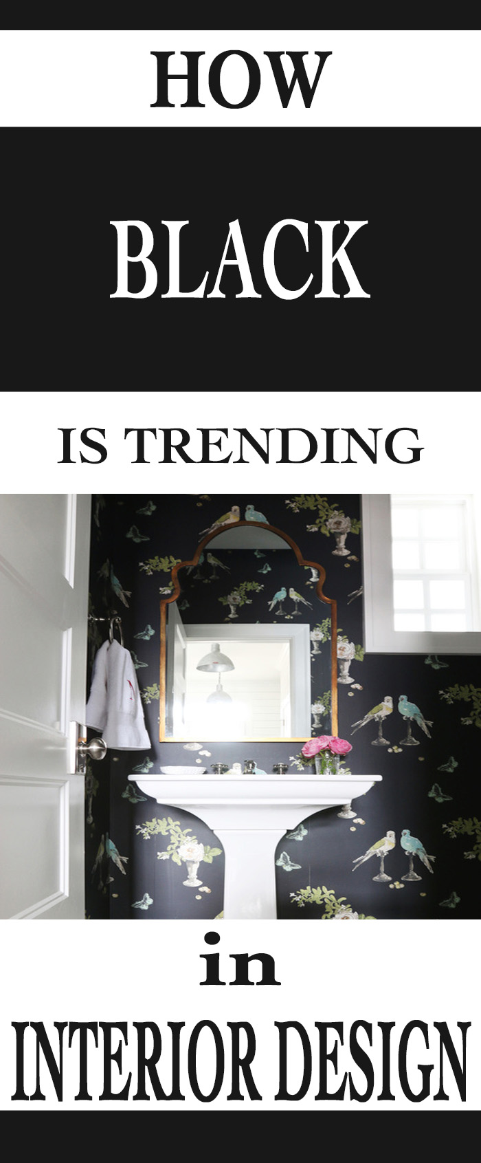 How Black is Trending in Interior Design