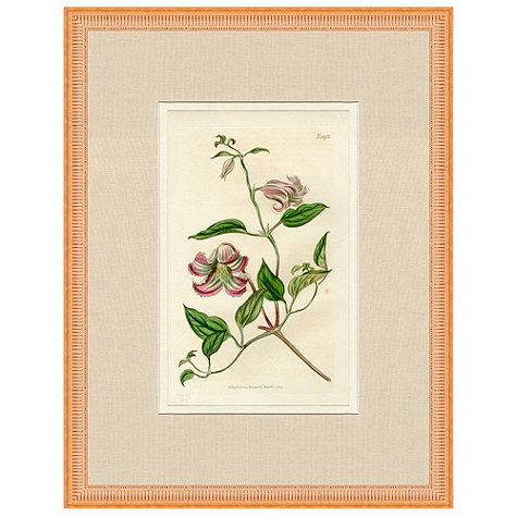 Ballard Designs Flowers
