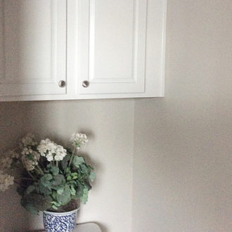 A Tiny Toilet Room Makeover & Painting Cabinetry Advice